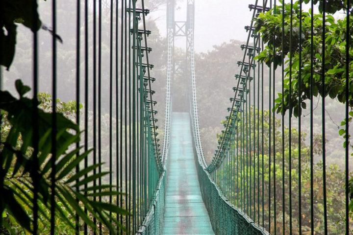 Monteverde-8
