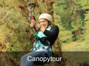 canopytour