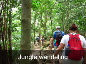 jungle-wandeling