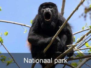 nationaal-park