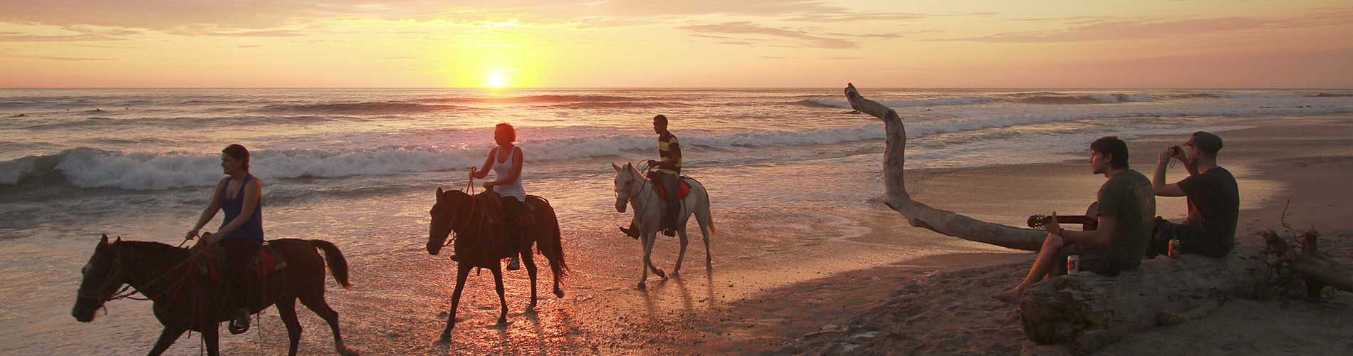 Verschillende paardrijtochten