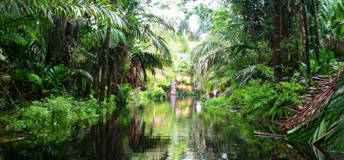 Highlights Costa Rica