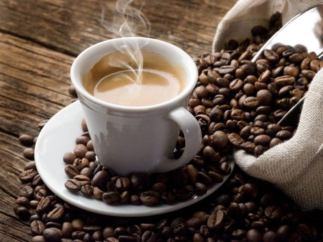 Koffieplantage Costa Rica 3