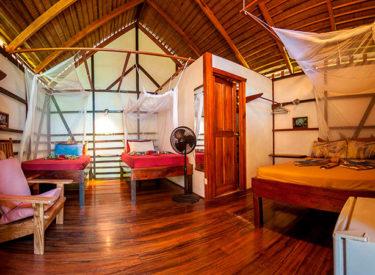 Coco Loco Lodge 1