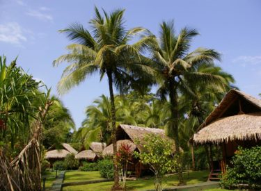 Coco Loco Lodge 3