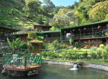 Trogon Lodge 1
